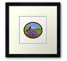 Grapes Vineyard Farm Oval Woodcut Framed Print