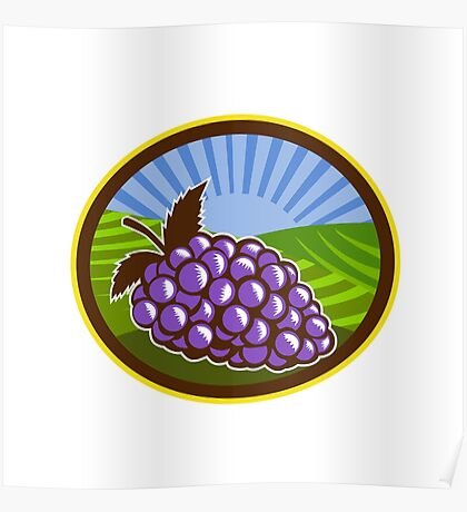 Grapes Vineyard Farm Oval Woodcut Poster