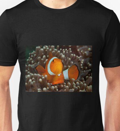 False Clown Anemonefish, Kapalai, Sabah, Malaysia Unisex T-Shirt