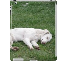 Sleeping White iPad Case/Skin