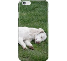 Sleeping White iPhone Case/Skin