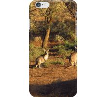 Two Roos iPhone Case/Skin