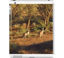 Two Roos iPad Case/Skin