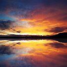 Skyfire by James McKenzie
