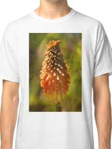 0251 Kniphofia - Red Hot Poker Classic T-Shirt