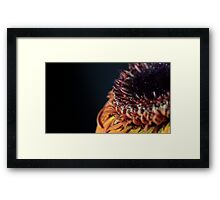 gerbera floral abstract background Framed Print