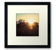 Trick of the Light Framed Print
