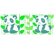 Green Leaf Panda Photographic Print