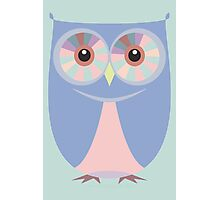 A BLUE OWL Photographic Print