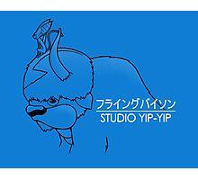 Studio Yip-Yip Photographic Print