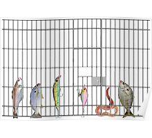 Jail bait Poster