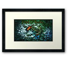 Point O' Rocks - The Ancient Framed Print