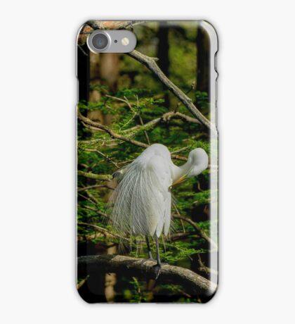 Great White Egret Pruning iPhone Case/Skin