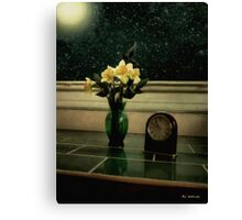 Starry Night in Spring Canvas Print
