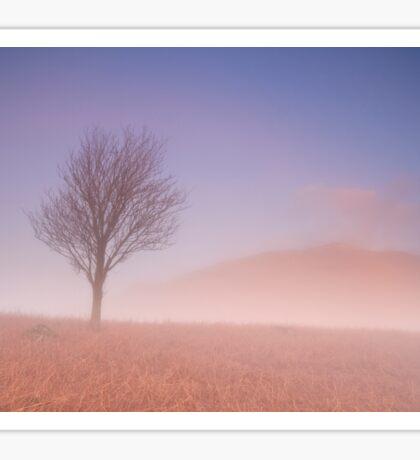 Mist at Daybreak Sticker