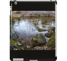 Quiet Reverie iPad Case/Skin