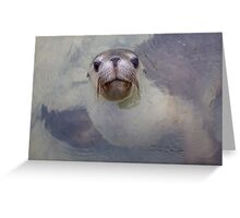 Abrolhos Islands, Western Australia Greeting Card