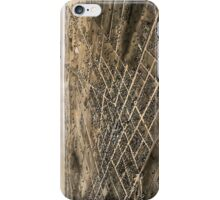 Birds eye view of the city of Coldwater, Michigan - 1868 iPhone Case/Skin