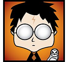 Harry Potter and Hedwig Photographic Print
