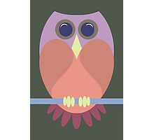 A BLUSHING OWL Photographic Print