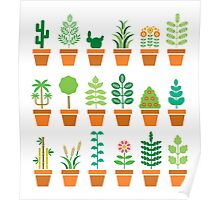 plants Poster