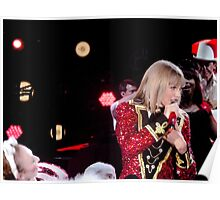 Taylor Swift The Red Tour Poster
