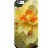 Daffodil's  iPhone Case/Skin