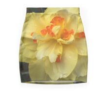 Yellow Orange Daffodil II If you like, please purchase, try a cell phone cover thanks Mini Skirt