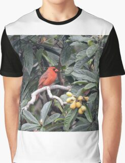 Cardinal in a Fruit Tree Graphic T-Shirt