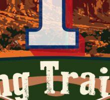 Texas Rangers Spring Training 2016 Sticker
