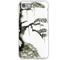 Chinese pine, a symbol of longevity iPhone Case/Skin