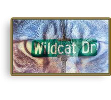 Wildcat Drive Canvas Print
