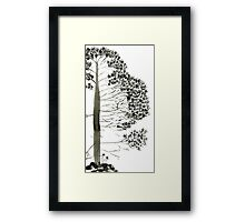 Single Pine, a symbol of longevity Framed Print