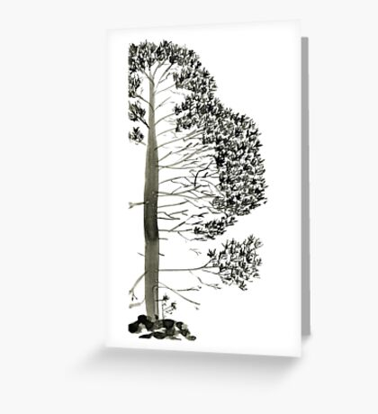 Single Pine, a symbol of longevity Greeting Card