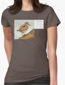 Bird Book Apparel - Least Sandpiper Womens Fitted T-Shirt