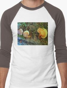 Mushrooms three Men's Baseball ¾ T-Shirt