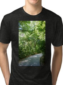 Path to Dune Overlook Tri-blend T-Shirt