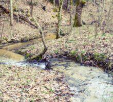 Stream Through The Woods Sticker