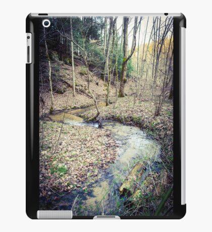 Stream Through The Woods iPad Case/Skin