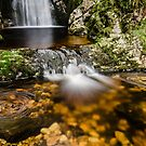 Glenevin Waterfall  by Martina Fagan