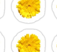 Yellow Daisy Sticker