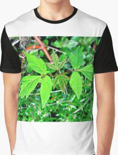 Villan Poison Ivy in Bloom Gardeners enemy Graphic T-Shirt
