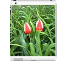 Pair of Tulips in Bloom Nature walk iPad Case/Skin