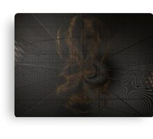 Caught in a Spider's Web Canvas Print