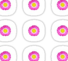 Pink and Yellow Daisy Sticker