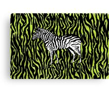Zebra - animal colour pop art Canvas Print