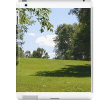 Field landscape. iPad Case/Skin