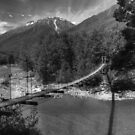 0090 Bullers Gorge Footbridge (BW) by DavidsArt