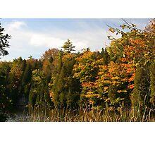 Early Fall Season around the lake. Photographic Print