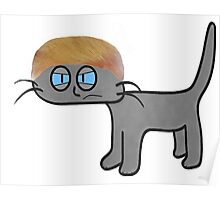 A Mad Cat Is Having Bad Hair Day Poster
